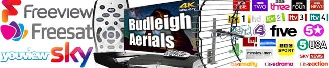 Budleigh Aerials repairs